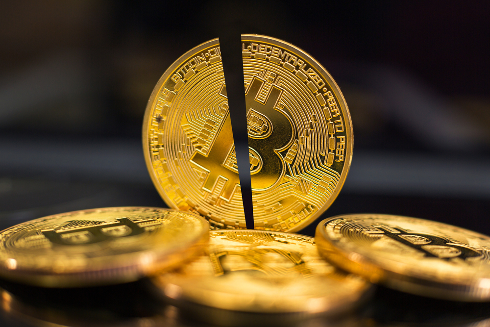 A single bitcoin cut in half